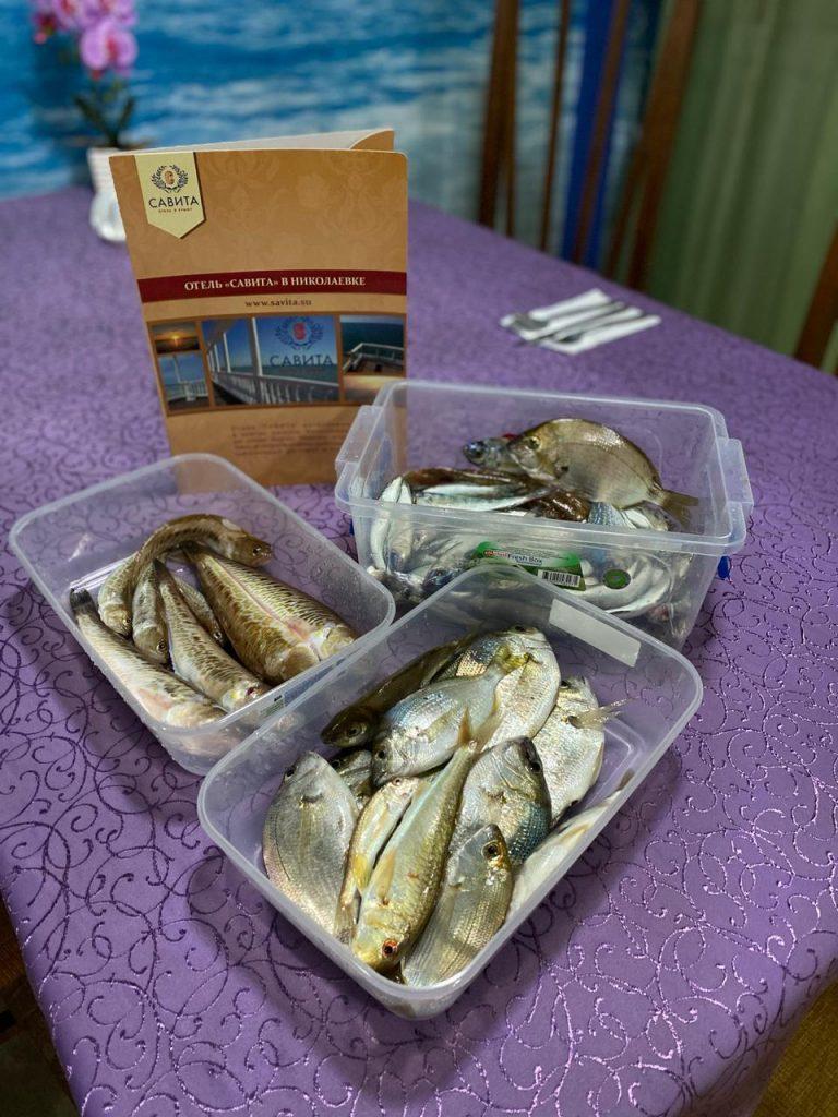 Рыбалка в Николаевке